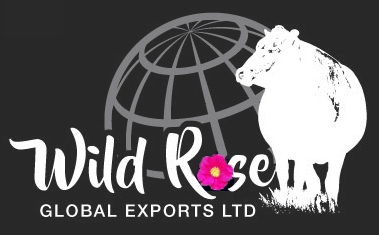 Wild Rose Global Export Canada Cattle
